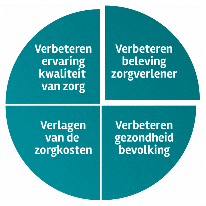 De principes van Quadruple aim